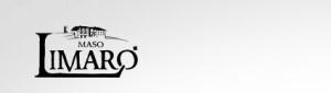 logo-maso