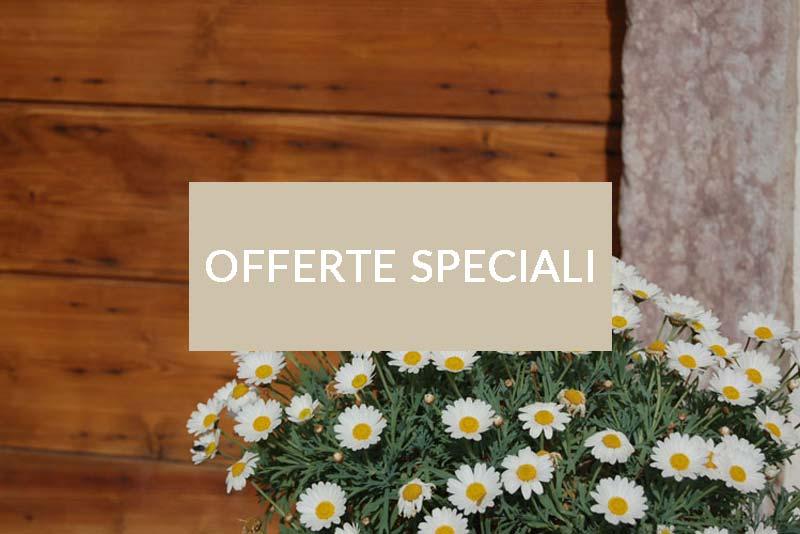 offerte-speciali-pietrarara-new-box